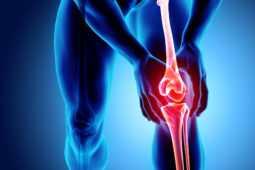 変形性膝・股関節症の幹細胞治療